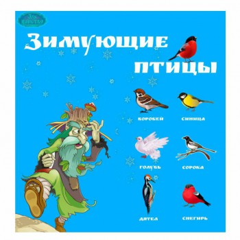 Зимующие птицы. - 89XtmWFmENA.jpg